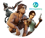 Microgaming Slots Game