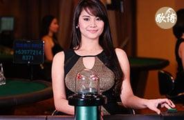 Allbet Live Casino