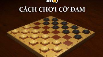 Cờ đam cũng là một trò chơi cờ đấu trí